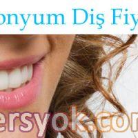 zirkonyum diş, zirkonyum diş fiyatları, porselen dişler